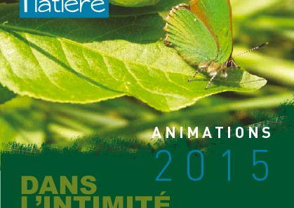 Animations-platiere-1